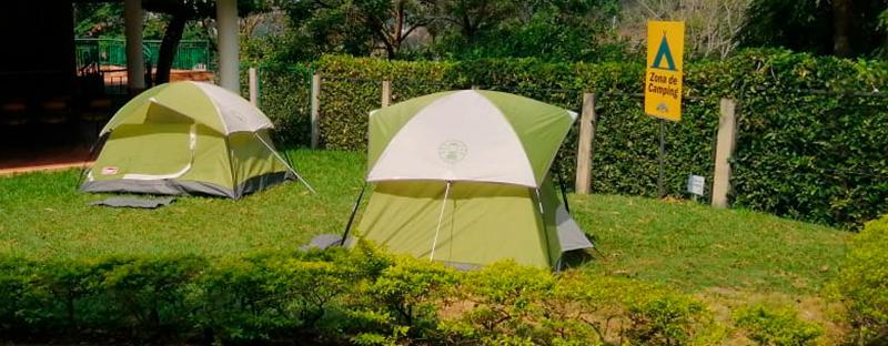 camping_800x312px.jpg